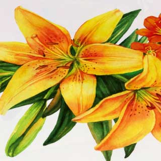 "Bordstabletter ""Lily"", 4-pack"